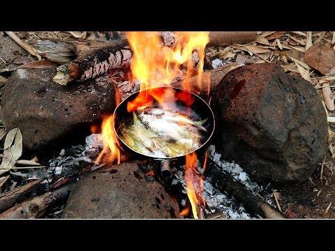 Đi Rừng Bắt Cá Suối - Ẩm Thực Thiên Nhiên Cá Rán Bốc Lửa - Thần Nông