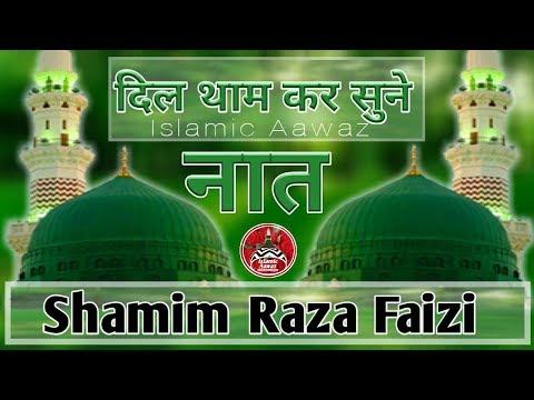 Naat E Rasool In Urdu नाम मैंने  जब मोहम्मद मुस्तफा का लेलिया Naat Shareef By Shamim Raza Faizi