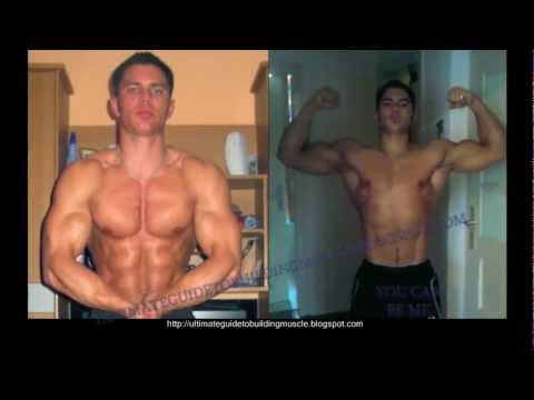Muscle building diet and workout guide [VIP - FREE]