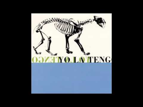 Yo La Tengo- The Forest Green