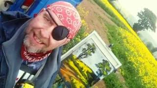Pirate Painter in a Rainy Yellow Field