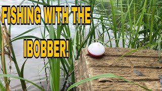 FISHING WITH, AND REVIEWING THE IBOBBER!