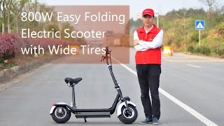 800W 48V Easy Folding Electric Scooter with Wide Big Tubeless Tires