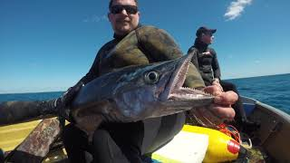 Wettie TV- Coral Sea Spearfishing Adventure 2019 Part 3