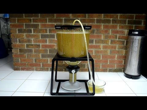 The Catalyst Fermentation System: A Hands-On Review