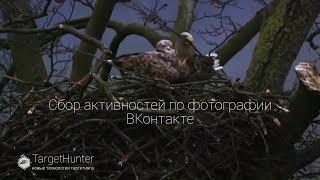 Урок№ 25 Сбор активностей по фотографии ВКонтакте