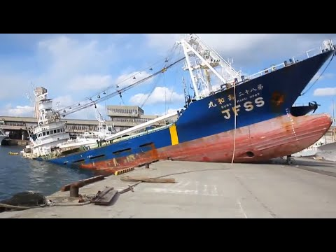 Ship Crash Compilation