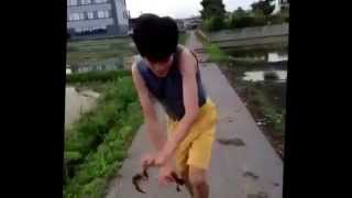 Vine Guy Gets Niped By A Lobster