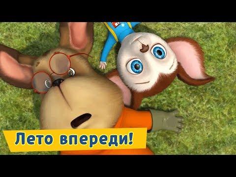 Лето впереди 🌞 Барбоскины 🌈 Сборник мультфильмов 2019