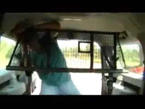 Тест драйв  Dacia Logan MCV, часть 2