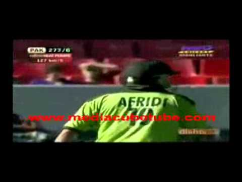 Shahid Afridi Fastest 50 By 19 Balls Against Nz video