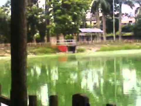 Indian Beautiful Park Beside Rail Track video
