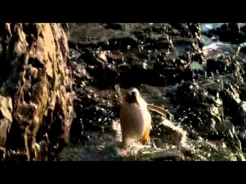National Geographic Channel: De Kust