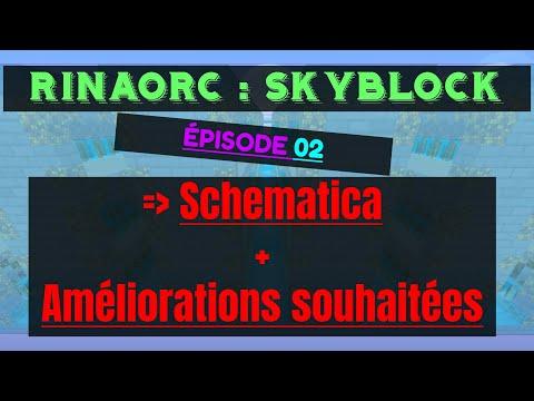 Rinaorc skyblock : Schematica + Améliorations serveur souhaitées