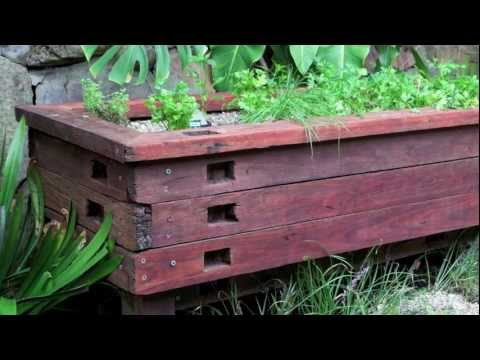 How-to... Create an aquaponic pond system