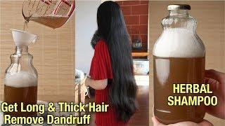 घर पर बनाये शैम्पू | इतना असरदार है की हैरान रह जायेंगे आप - Homemade Shampoo for Hair Regrowth