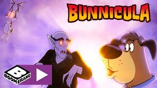 Bunnicula | What's Inside The Box? | Boomerang UK 🇬🇧