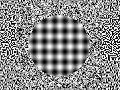 Watch video Moving Illusions now