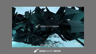 SHORT MOVIE GX306 Stream ストリーム