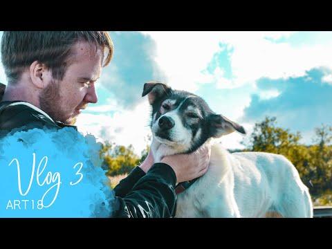 Vlog 3 (ART18) - MS Artania - Maurice der Hundeflüsterer - Phoenix Reisen
