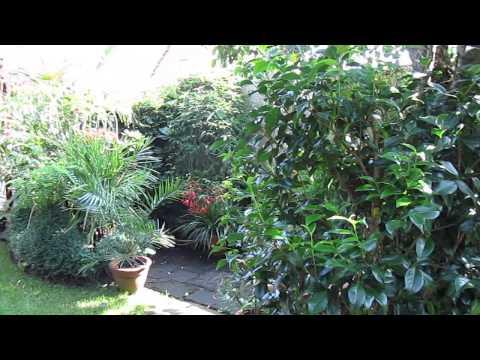 Palmen-Garten Gronau Im Münsterland
