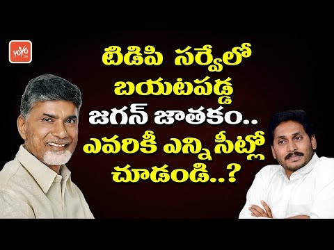 YS Jagan Horoscope Revealed in TDP Survey | AP Elections 2019 | Chandrababu | YOYO TV Channel