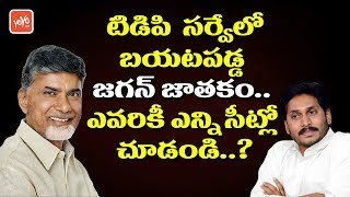 YS Jagan Horoscope Revealed in TDP Survey | AP Elections 2019 | Chandrababu