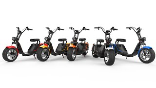 Caigiees r804 Citycoco Harley big wheel electric scooter with EEC approved from Rooder factory