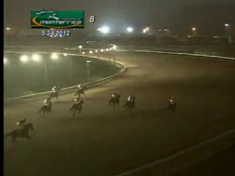 MIREN ESTA CARRERA EN EL HIPODROMO DE MONTERRICO (amazing racing)
