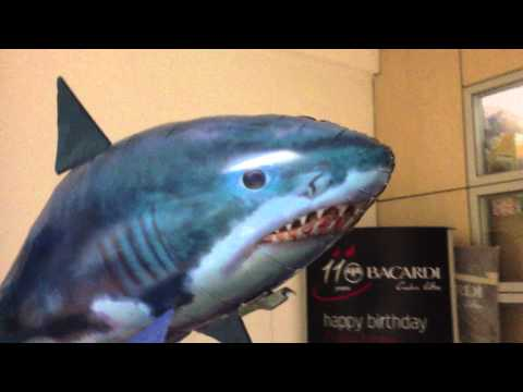 Air Shark in the office a short movie by Lorenzo Giunchi