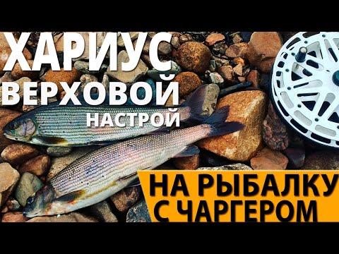 рыбалка на хариуса видео на тагуле