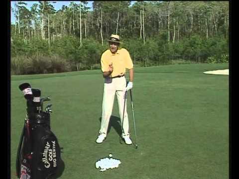 Hoc danh Golf bai 4 Học Chơi Golf cho đến chuyên nghiệp