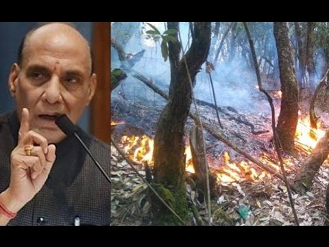 Fire Situation Under Control in Uttarakhand Says Rajnath Singh