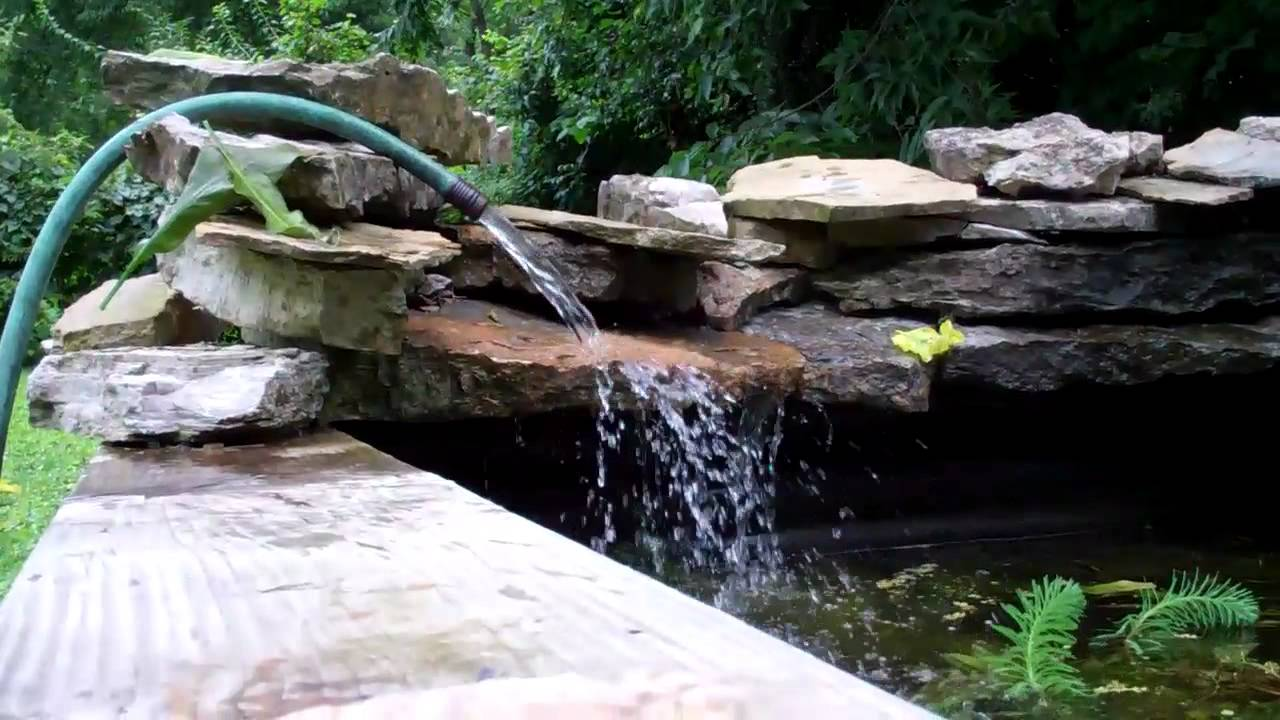 Doing Water Changes On The Garden Pond To Get Ride Of Algae Youtube