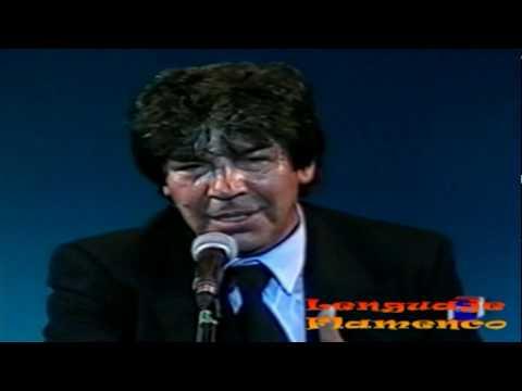 Guitarra Flamenca - Juan Carmona Habichuela - Fandangos