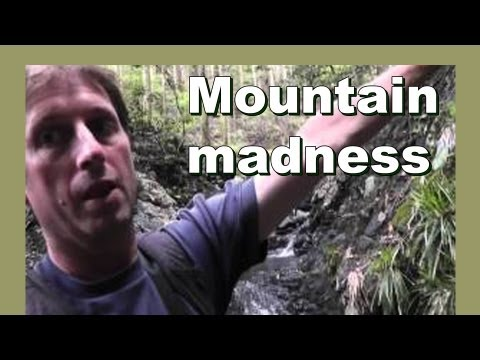Mountain madness - Stream of Consciousness - LylesBrother