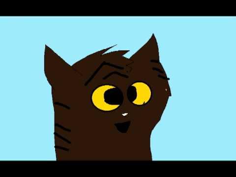 Коты-воители С днём рождения!