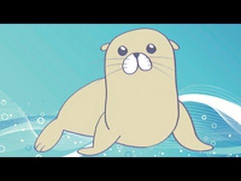 Cómo dibujar un león marino. Dibujos infantiles