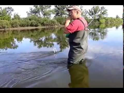 ютуб рыбалка на горох