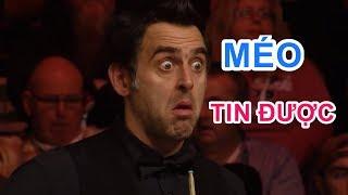 Những khoảnh khắc bida hài hước, vui nhộn - Funniest moments of billiards