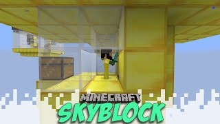 Mini Me! - Skyblock Season 2 - EP06 (Minecraft Video)