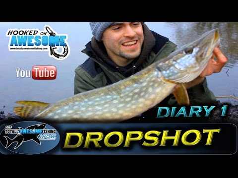 DROPSHOT DIARIES - Ep.1 - Perch & Pike on Rivers | TAFishing