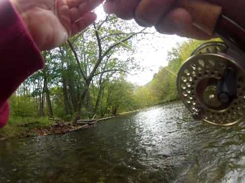 Fishing Cherokee NC, Trophy Trout Waters