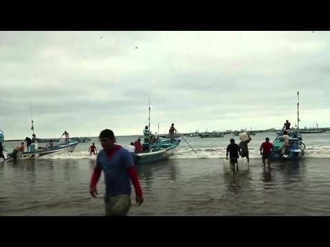 Fishing Boats in Puerto Lopez, Ecuador, Head Out to Sea