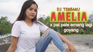 Download lagu DJ TERBARU VIRAL PAL PAL E x AMELIA BASS GLER