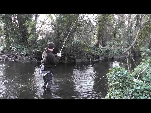 Stick Float Fishing on the River Wandle