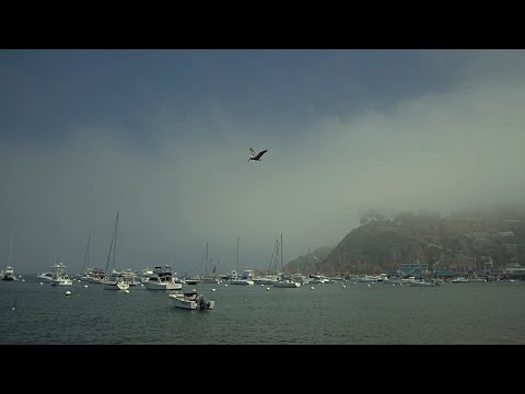 Santa Catalina Island, California (2012 HD)