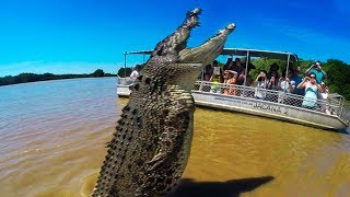BIGGEST Crocodiles In The World!