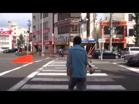 Japan Vlog #6 A Day Trip To Nagoya Castle