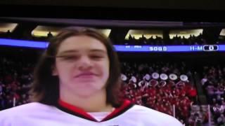 2015 Minnesota State High School All Hockey Hair Team